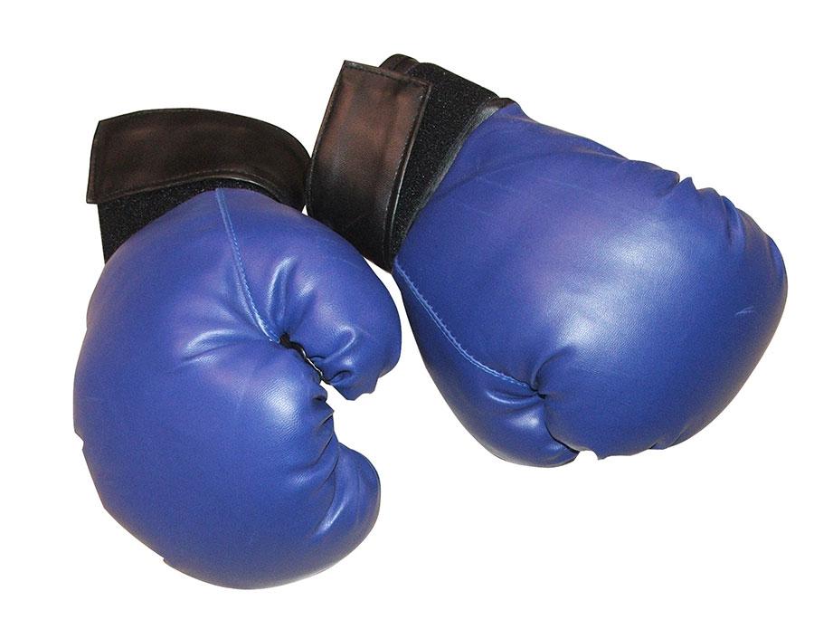 Sport-boks rukavice pv 12